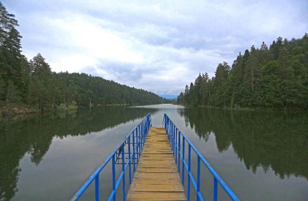 Bilecik'in göletler diyarı olarak bilinen Pazaryeri ilçesindeki en ünlü göletlerden olan Bozcaarmut Göleti, özellikle hafta sonlarında çevredeki büyükşehirlerden, kampçı, fotoğrafçı ve günübirlik ziyaretçi akınına uğramaktadır.